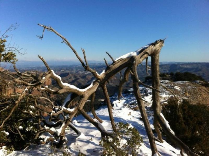 La neu arriba a l 39 alt empord despr s d 39 emblanquinar mig for Piscina olimpia sabadell