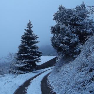 la nevada d'avui a casa, entre Montseny i Collformic