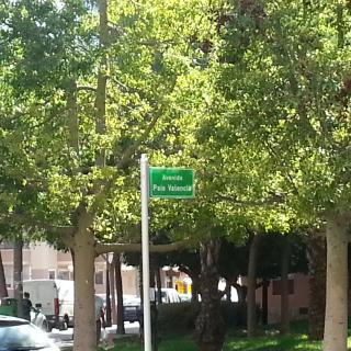 Avda País Valencià