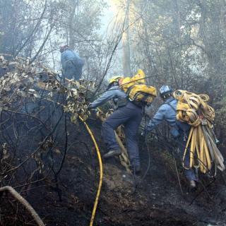 Efectius dels bombers treballen al cap de l'incendi, aquest dimarts a Foixà