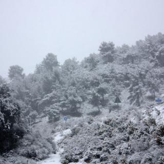 Muntanyes nevades a la zona d'Olèrdola (horitzontal) La neu col·lapsa l'autovia C-15 entre Vilanova i la Geltrú i Vilafranca del Penedès