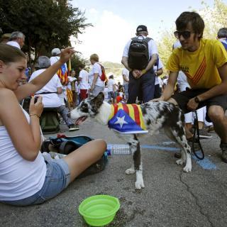 A Berga, diversos joves juguen amb el seu gos abans queu arribi el minut 17.14