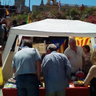 Estat Català a la concentració avui a Montjüic en suport del referèndum per la independència de Catalunya
