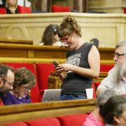 Debat de les lleis de desconnexió al Parlament