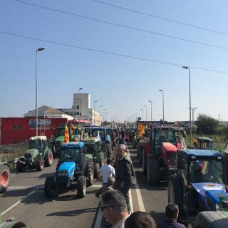 Tractorada a Lleida