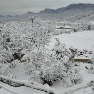 Neu a Santa Pau (Garrotxa)