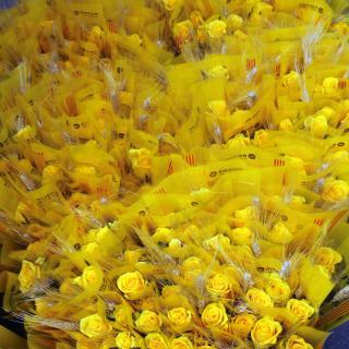 Esclat groc