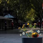 Flors deixades pels familiars de les víctimes a la Rambla de Barcelona
