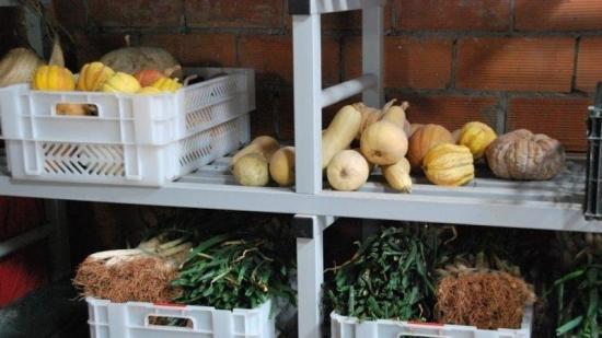 Les iniciatives d'economia social de l'Anoia es citen al Coop de Cap Foto:Info Anoia