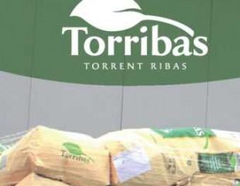 Borja Casamitjana és la quarta generació de l'empresa familiar i director d'operacions de Torribas Foto:ARXIU