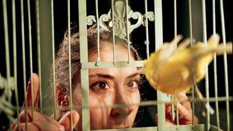 Artemis Stavridi observa un dels canaris reclosos en les gàbies que pengen a l'escenari en aquesta peça. Foto:J.P. STOOP