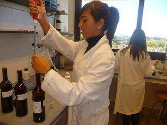 Una investigadora al parc de la Indústria Enològica VITEC, a Falset.  Foto:ARXIU