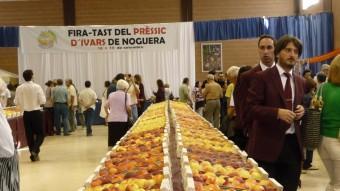 La Fira del Prèssic inclou l'exhibició de varietats d'aquesta fruita, a més de tastos i també xerrades informatives Foto:AJ. D'IVARS DE NOGUERA
