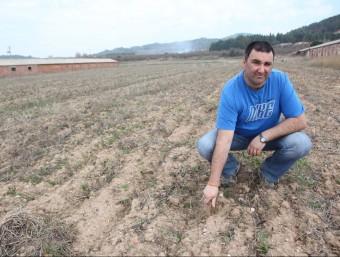 Enric Domènech ultima les feines per conrear patates de Prades.  Foto:J. FERNANDEZ
