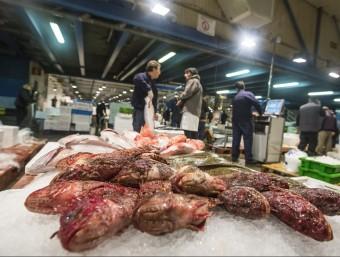 Interior del Mercat Central del Peix de Mercabarna Foto:ALBERT SALAMÉ /ARXIU