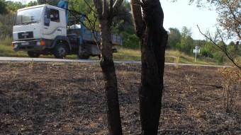 La zona  que va quedar afectada a Vilopriu Foto:JORDI RIBOT (ICONNA)