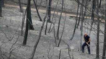 Després del pas del foc, ahir les imatges de desolació i terra cremada eren una constant als boscos i en alguns nuclis habitats de la zona afectada Foto:EFE/ REUTERS