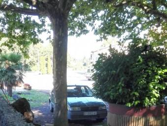 El cotxe del noi , davant de l'arbre on era penjat. Foto:T. SOLER