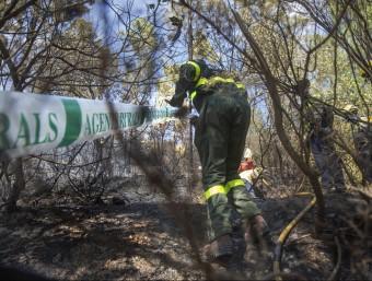 L'equip dels Agents Rurals treballant en la investigació de l'incendi de les Gavarres d'aquest agost Foto:JOAN CASTRO / ICONNA