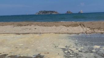 Una de les basses amb escuma fotografiada el cap de setmana a la platja de la Pletera Foto:EL PUNT AVUI