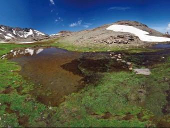 Serra Nevada a l'estiu. Foto:C.S.L