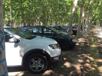 Cotxes aparcats al parc de la Devesa, aquest estiu Foto:J.N