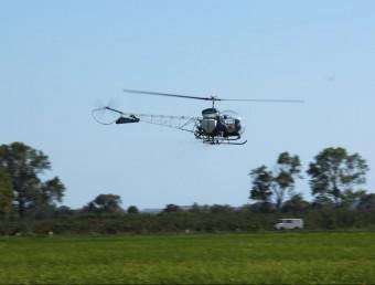 L'helicòpter durant l'aplicació de saponines a l'arrossar de Fonclara Foto:EL PUNT AVUI