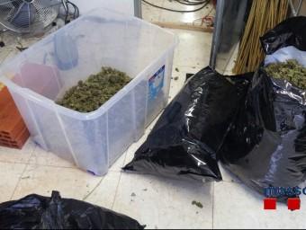 Part de la droga que van comissar a la casa de Cassà de la Selva els Mossos i la Policia Local.