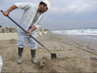 Tasques de neteja de la platja.  Foto:ARXIU