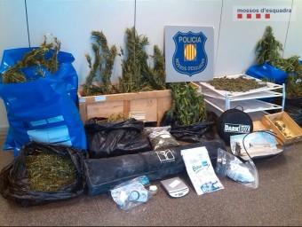 Imatge de la marihuana i alguns estris per conrear-la intervinguts per la policia al pis de Vilafranca del Penedès Foto:ACN