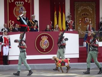 El rei Felip VI observa el pas de la Legió i de la seva cabra Pablo Foto:EFE