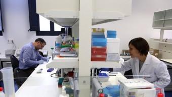 Dos investigadors, ahir al nou centre de l'IDIBGI, a Salt QUIM PUIG
