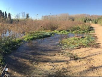 La zona inundada , en aquest cas al costat del camí del Torín, abasta centenars de metres Foto:J.N