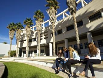 Una zona del Campus de la Universitat d'Alacant. Foto:EL PUNT AVUI