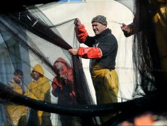 A Catalunya queden menys d'un miler de vaixells de pesca, un 9% de tot els que hi ha a l'Estat.  Foto:QUIM PUIG