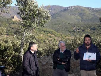 El conseller Santi Vila va visitar les proves pilot que s'estan fent als boscos de Requesens, al municipi de Cantallops, per avaluar la capacitat d'adaptació al canvi climàtic Foto:J.CASTRO / ICONNA