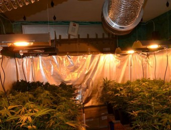 La droga estava en una de les habitacions del pis d'un bloc del carrer Joan Carles I Foto:ECN