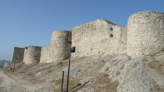 El castell de la Pobla de Claramunt és un dels exemples de les propietats que té la Generalitat a la Catalunya Central Foto:MARTA MEMBRIVES