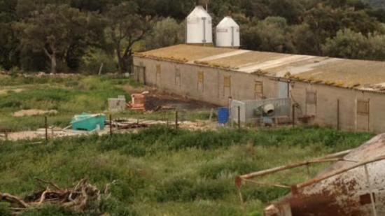 Una imatge de l'estat actual de la granja que es vol ampliar Foto:EL PUNT AVUI