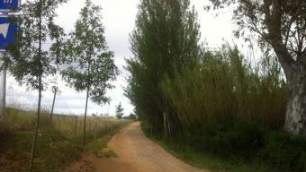Un dels trams de la via verda, a Palamós Foto:J.T