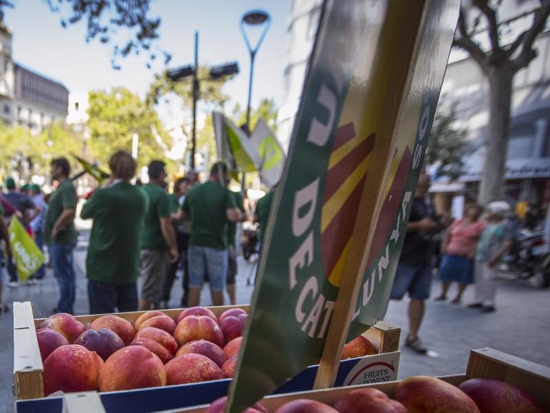 Protesta contra el vet rus, a Lleida.  Foto:ALBERT SALAMÉ