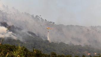 Segons les estimacions dels agents rurals, les flames van arrasar 22,4 hectàrees de vegetació forestal. Foto:JOAN SABATER