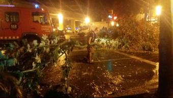 Un bomber retirant ahir una gran branca de l'avinguda Santa Eugènia de Girona Foto:L. ARTIGAS