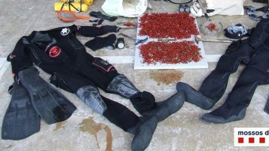 Els estris de busseig i els cinc quilos de corall vermell que la policia va decomissar als tres ocupants d'una barca, que també va quedar immobilitzada Foto:CME