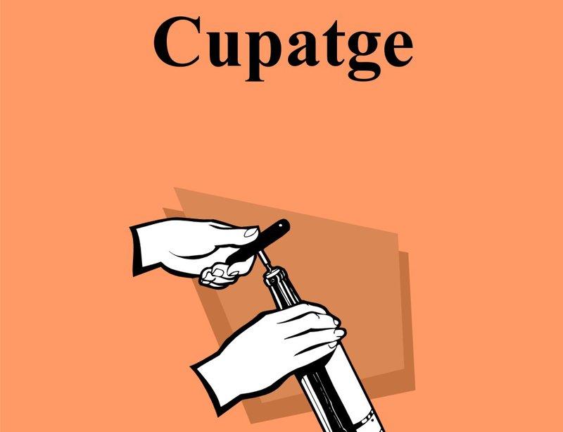 Imatge de la portada del llibre de Narcís Juanola.